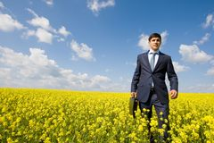 Man in meadow Stock Images