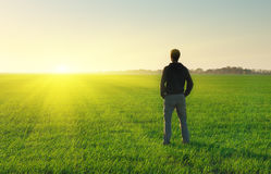 Man in meadow green meadow. Stock Images