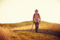 Man on meadow in late sun Royalty Free Stock Image