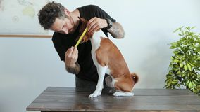 Man measures his dog with ruler