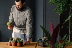 Man med att arbeta i trädgården passion som sätter en kaktus med annan suckulent royaltyfria bilder