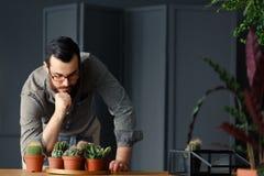 Man med att arbeta i trädgården passion som ser kakturs och suckulenter i gr royaltyfria foton