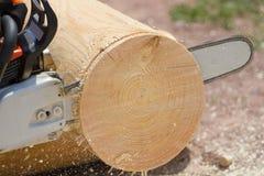 Man med chainsawen Arkivbilder