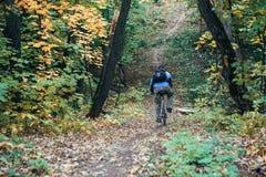 Man med cykeln i skog royaltyfri foto