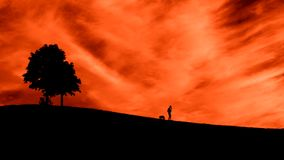 Man med en hund på solnedgången horisont Romantisk bild