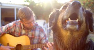 Man med hans hund som spelar gitarren i trädgården 4k arkivfilmer