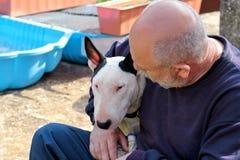 Man med hunden EngelskaBull terrier vit hund i företag med hans ägaresammanträde och tycka om i den trädgårds- utomhus- och dalta royaltyfri foto
