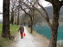 Man med hunden nära bergsjön med turkosblått vatten och det gamla trädet arkivbild