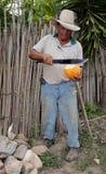 Man med machetet och kokosnöten Royaltyfria Bilder