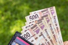 Man med pengar Royaltyfria Foton