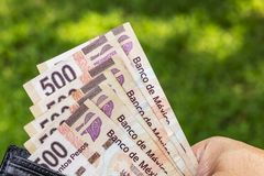Man med pengar Arkivfoto
