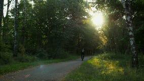 Man med ryggsäcken rider cykeln bort vid parkerar gränden, hösten, solnedgång arkivfilmer