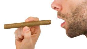 Man med skägget rymmer en oanvänd cigarr royaltyfria foton