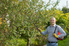 Man med trädgårds- spray i fruktträdgård Royaltyfri Bild