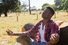 Man meditating in the park. On a sunny day Royalty Free Stock Photos