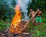 Man Mentawai tribe prepares on a fire killed a wild pig hunting. MENTAWAI PEOPLE, WEST SUMATRA, SIBERUT ISLAND, INDONESIA – 03 OKTOBER 2011: Man Mentawai royalty free stock photos