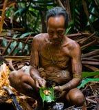 Man Mentawai tribe produces larval beetles in the sago palm. MENTAWAI PEOPLE, WEST SUMATRA, SIBERUT ISLAND, INDONESIA – 16 NOVEMBER 2010: Man Mentawai royalty free stock photography