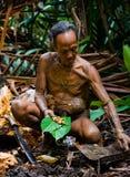 Man Mentawai tribe produces larval beetles in the sago palm. MENTAWAI PEOPLE, WEST SUMATRA, SIBERUT ISLAND, INDONESIA – 16 NOVEMBER 2010: Man Mentawai royalty free stock images