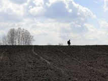 A man with a metal detector on a plowed field, against a background of sky and clouds royalty free stock photography