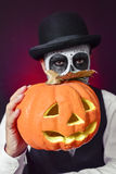 Man with mexican calaveras makeup and carved pumpkin Royalty Free Stock Photo