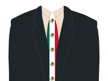 Man with Mexican flag tie royalty free illustration