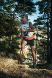 Man, middle-aged runner runs distance of race forest trail of stones Royalty Free Stock Photo