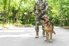 Man in military uniform with German shepherd do. G outdoors Royalty Free Stock Photography