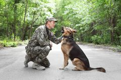 Man in military uniform with German shepherd dog. Outdoors royalty free stock images