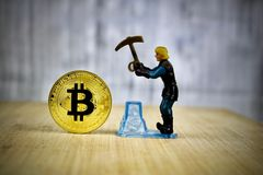 Man mining gold bitcoin. Cryptocurrency physical gold bitcoin coin. Mining man Stock Images