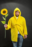 Man in the monitor holding a sunflower Stock Photo
