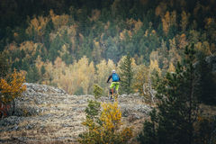 Man on a mountain bike. Man mountain Biking on the mountain on the background of autumn forest royalty free stock photo