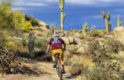 Man Mountain Biking On Arizona Desert Trail With Cactus in Background. Man Mountain Biking On a beautiful  Arizona Desert Trail with cactus and dark skies in stock images