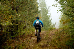 Man mountain biking in autumn forest Royalty Free Stock Images