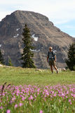 Man in mountain meadow Stock Image