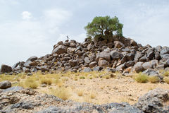 Man on a mountain of rocks in the desert Royalty Free Stock Image