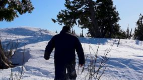 A man moves through the deep snow in winter in sunny weather. A man makes his way through the snowdrifts, falls and rises through the deep snow in the forest stock video