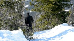 A man moves through the deep snow in winter in sunny weather. A man sneaks through the drifts, falls and rises in the deep snow in the forest among the trees stock video