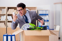 The man moving office with box and his belongings Royalty Free Stock Photo