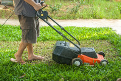 A man mow grass at his backyard Stock Photography