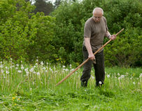 Man mowing grass Royalty Free Stock Photo
