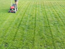Grass mowing. Man mowing grass with grass-mower Stock Photography