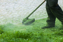 Man mowing green grass using brushcutter Stock Images