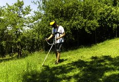 Man mowing green wild field royalty free stock photo