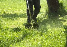 The man mowing green wild grass field using brush cutter mower or power tool string lawn trimmer. To mow a grass with the trimmer. Trimer mows a lawn. Care of Royalty Free Stock Image