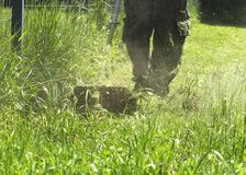 The man mowing green wild grass field using brush cutter mower or power tool string lawn trimmer Stock Photography