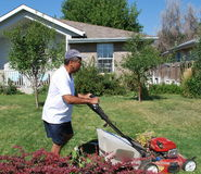 Man mowing lawn. Stock Photos