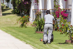 Man mowing lawn in a hotel garden Stock Images