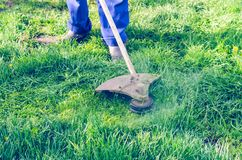 A man mows a green grass lawn mower on a sunny day royalty free stock image