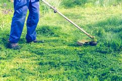A man mows a green grass lawn mower on a sunny day royalty free stock photography