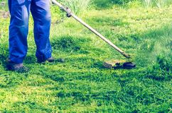 A man mows a green grass lawn mower on a sunny day royalty free stock images